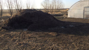 peat moss / soil for sale