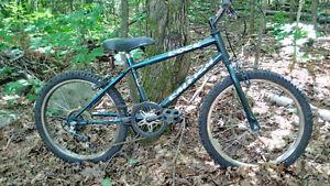 "20"" Raleigh Rock Mountain Bike (7-10 year old)"