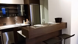 Furnished Bachelor in Yorkville area (Yonge/Bloor)