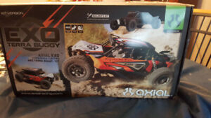 Axial Terra Buggy remote controlled