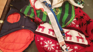 Multiple puppy coats ,collars and clothes.3 to 9 pds.