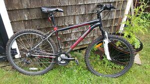"""17 """" Reebok eclipse bike"""