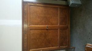Antique book cabinet with doors