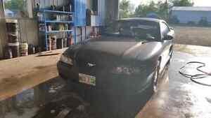 1995 5.0L GT mustang