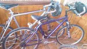 2 Expensive bicycles Giant and Vinci