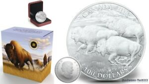 2013 Silver $100 BISON Coin