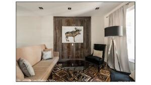 Luxury Furnished 4 Bedroom Leslieville Home