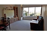 Double room to rent in beautiful 2 bed apartment, Hove