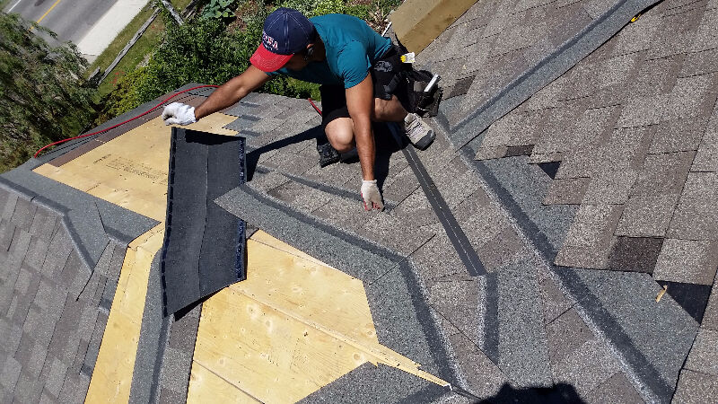 Roof Repair Roofing Service Shingle Gutter Attic Mold