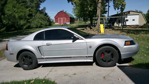 Looking For 99-04 Mustang Parts
