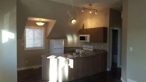 New, one bedroom 650 sq. ft. suite above garage
