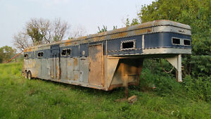 Horse trailer with 6 separate compartments