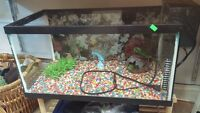 Fish Tank with Filter and Accessories