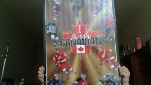 Hockey wall plaque and team Canada puck
