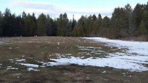 @@@@ Beautiful Estate 135 Acre Vacation Property