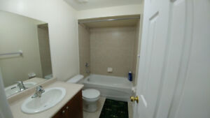One bedroom basement available from 1st November