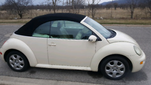 2003 VW Convertible Bug