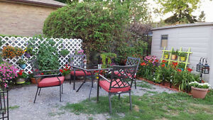 Beautiful apartment for rent in Oshawa, must see!!!