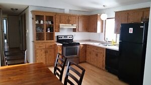 . Price is low for clean people only. Regina Regina Area image 4