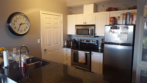 Gorgeous 1 bedroom apartment in luxury waterscape condo building