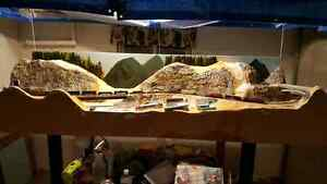 Excellent scenic N scale layout  Kingston Kingston Area image 8