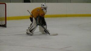 Goalie looking for fall/winter hockey team or a pick up league