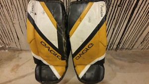 Ball hockey Goalie pads and mask