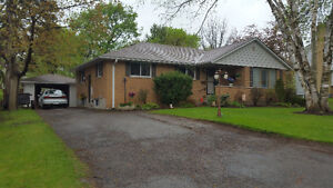 NEWLY RENOVATED LARGE 3 BEDROOM
