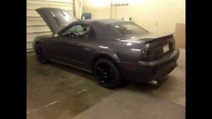 Trade 2003 Mustang GT Convertible for project muscle car