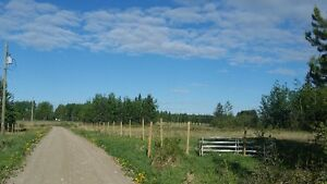 Reduced to sell. 40 acres with shop Prince George British Columbia image 4