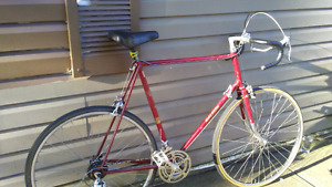 Extra Large Size , Raleigh 12 Speed,Road Bike