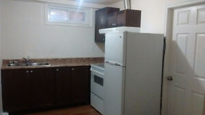 southgate 2 Bdrm Basement Suite with Separate Entry All included