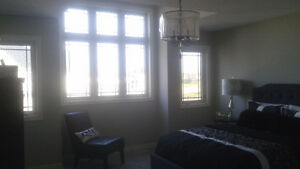 Brand new detech home for rent in south london London Ontario image 3
