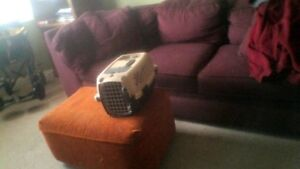 Pet Mate Carrier, Small