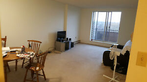 Looking for a male roommate for a two bedroom apartment. London Ontario image 2