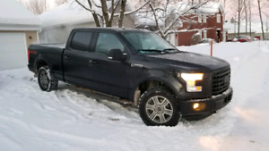 Ford F150 FX4 2015