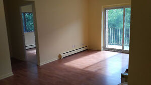 Renovated 1 Bedroom Apt Close to Downtown, Queens all inclusive
