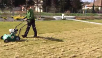 Year round position - Lawn yard maintenance - snow removal