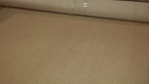 Area carpet/rug..... (new) only $60
