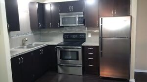 Beautiful One  Bedroom Condo