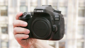 Canon 80d, 50mm f1.8 and bag