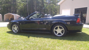 2004 mustang convertable CERTIFIED