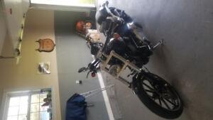 2013 Harley Davidson, breakout