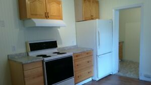 Newly Renovated 3 Bdrm 5 Appliances