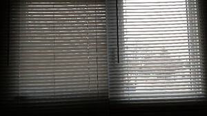 White Blinds (Small)