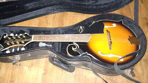 Smokey mountain mandolin