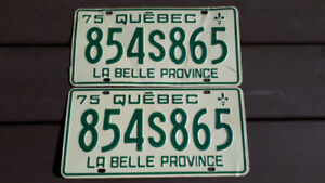 Plaques d immatriculation Ancienne 1975 Double - RARE