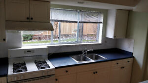 Newly renovated Ground floor suite for rent