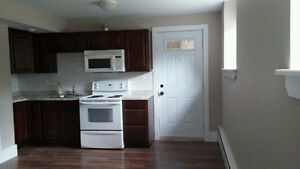 Newly Renovated One Bedroom Apt (HEAT, HOT WATER, PARKING)