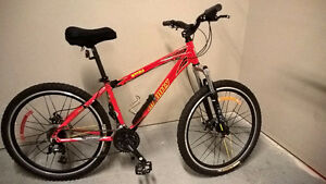 Infinity Mountain Bike